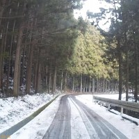 平成29年1月21日・東祖谷の道路状況