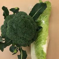 雪の下の野菜