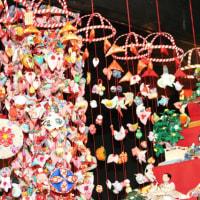 箱根・伊豆の旅(河津桜など)