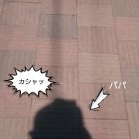 小走り部30キロ小走りその②ε=ε┏( ̄∇ ̄)┛