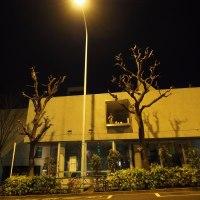 黄色い街灯と青い月