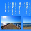 海の突堤の魅力