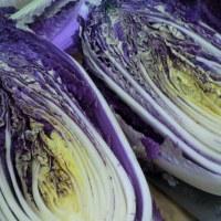 紫の白菜を食べてみた