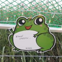 誰かの切なる願い(ソウルのハヌル公園)