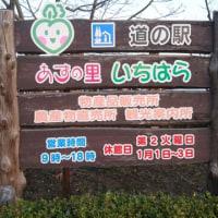 道の駅「あずの里いちはら」(千葉県)