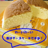チーズケーキだよ~