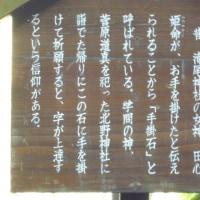 GWへ イスラエル・地中海料理  short trip & Mediterian cuisine