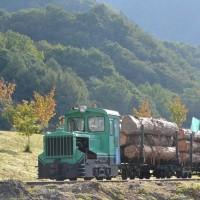10月9日撮影 王滝森林鉄道フェステバル その11 No.132号機が牽く運材列車発車!