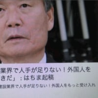 彼らの欧州移民受け入れと日本の移民受け入れはカルトなのだ!【精神病悪魔学】