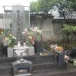 歌舞伎シネマ