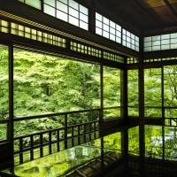 緑の瑠璃光院
