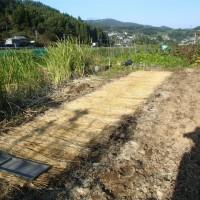 田んぼの秋処理と苗代養生
