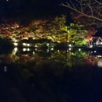 東山動植物園紅葉2