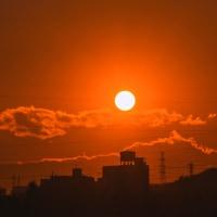 1月22日 【西府緑地】からは雲に沈んだ太陽