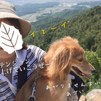 桃太郎伝説の鬼ノ城へぶらり登山
