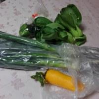 鎌倉野菜の生産地を巡る歩きに参加しました。