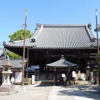 葛井寺に藤を見に行ってきました。