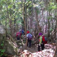 15 二ヶ城山(483m:安佐北区)登山  登山路脇に巨岩が