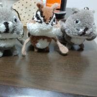 冬限定手芸部