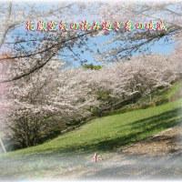 平和の砦交心qw0812『 花嵐空気の読み過ぎ身の破滅 』