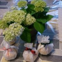 スーパー主婦のお料理教室(初夏)