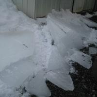 屋根の雪が落ちてきた