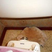 トイレの洗浄管の交換・・・千葉市