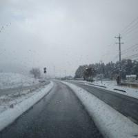 雪、活動中止 (2月11日)