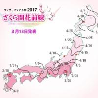 今年の桜前線