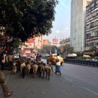 コルカタ 街の風景