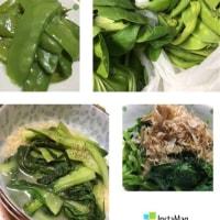 アオムシ料理〜