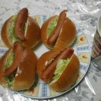 3号の朝ご飯・ホットドッグ
