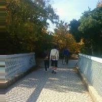 歩道橋FILE(番外編77)