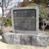 水戸の梅の話題(4)