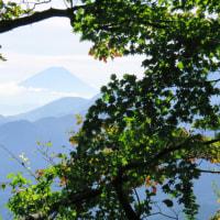 「日向山」へ再び