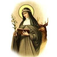 スウェーデンの聖女カタリナ乙女  St. Catharina a Suecia V.