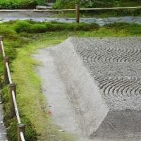 新緑の法然院、安楽寺、哲学の道