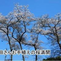 2017年04月13日(木)