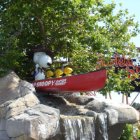Knott\'s BERRY FARM