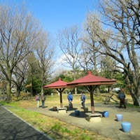 3月22日(水)日野市WG-5月下見・萩山~小金井公園A