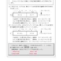 中2数学・式の計算 №11