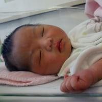 赤ちゃん誕生(^^♪