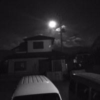 やはりの月。