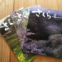 Daiwa Sakura Aidの冊子