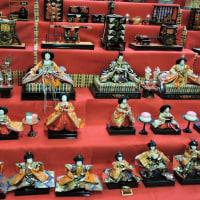 本日、立春。春の訪れ...真岡のひな飾りと大前神社、おめでたい日本一えびす様を訪問。