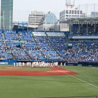 東京六大学野球 2015 春季リーグ戦
