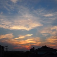 夕暮れ時・・・5/20