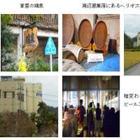 沖縄の大衆グルメ(H29.1.28)