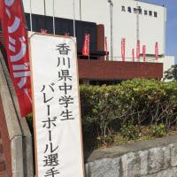 県選手権大会