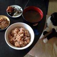 梅干、煮干、納豆、玄米